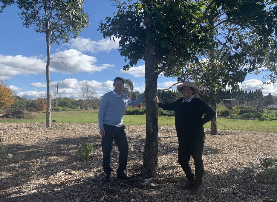 Whitlam MP Stephen Jones and Southern Highlands Botanic Gardens CEO Charlotte Webb inspect a tree planted by Mr Jones 10 years ago during the official opening of the gardens.