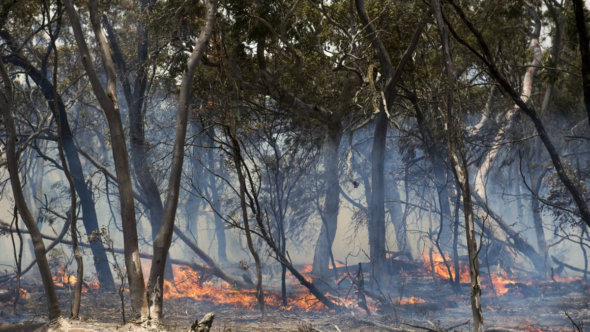 A backburn being conducted by farmers at Butmaroo Station. Picture: Dion Georgopoulos